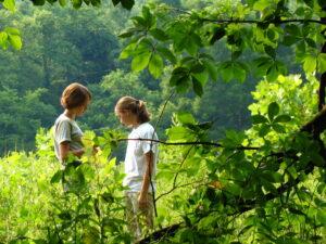 Coping with Trauma in Children