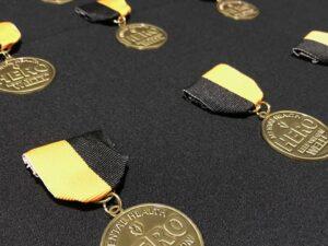 Receiving the Mental Health Hero Award