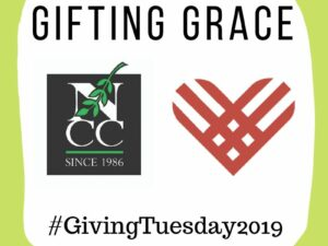 Giving Tuesday Results